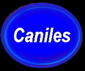 Caniles